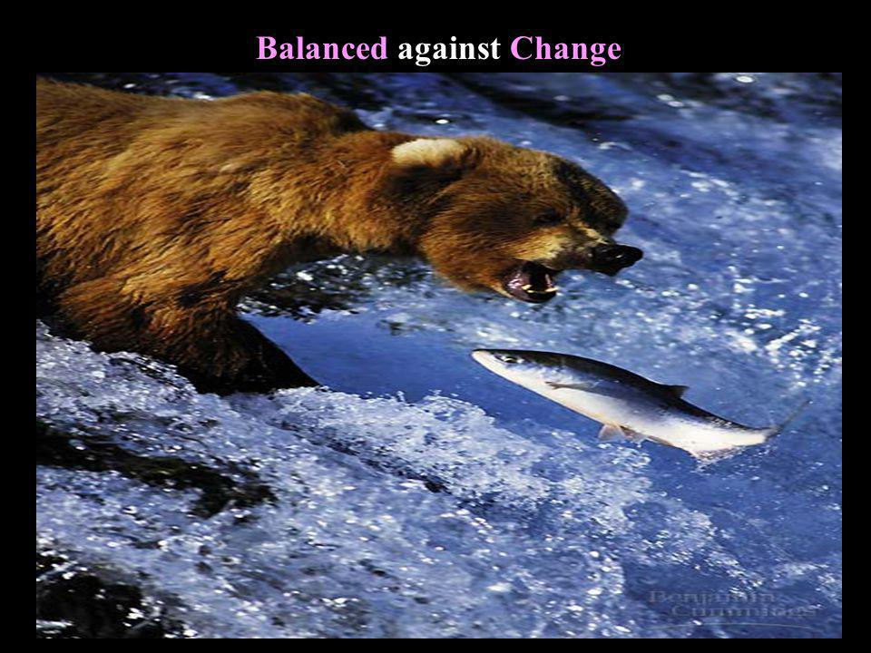 Balanced against Change