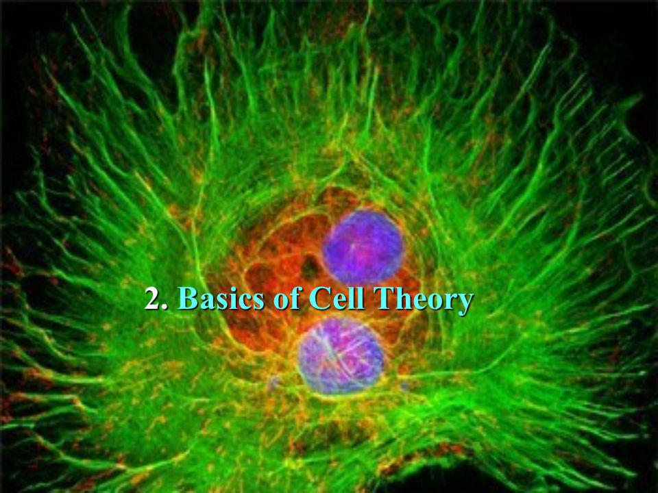 2. 2. Basics of Cell Theory