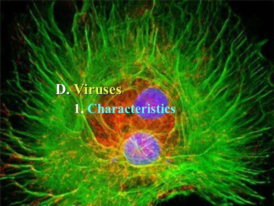 D. Viruses 1. Characteristics