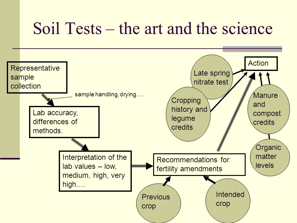What to do with results from the Soil Test Lab