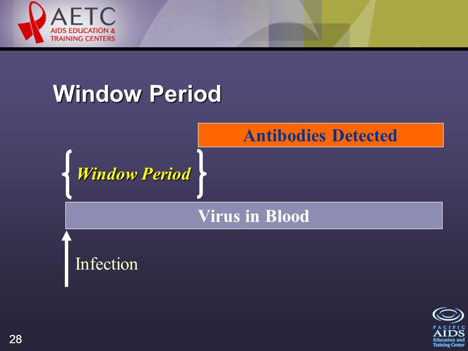 28 Window Period Virus in Blood Antibodies Detected Window Period Infection