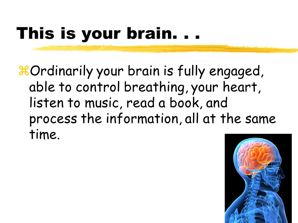 This is your brain...