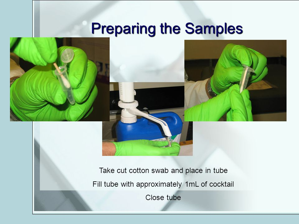 Preparing the Samples Take cut cotton swab and place in tube Fill tube with approximately 1mL of cocktail Close tube