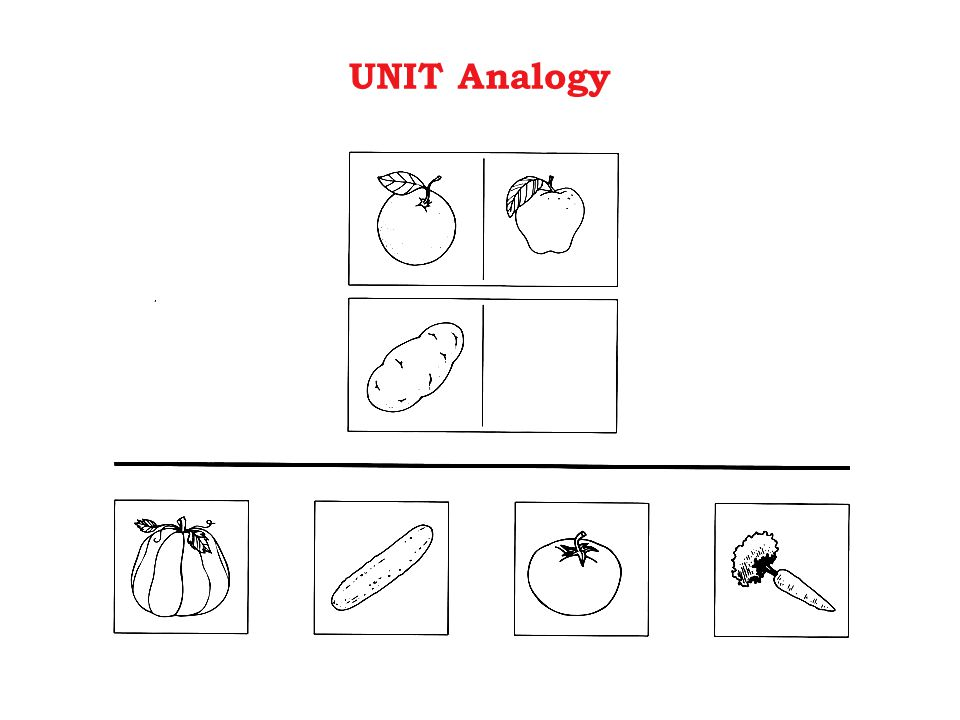 UNIT Analogy