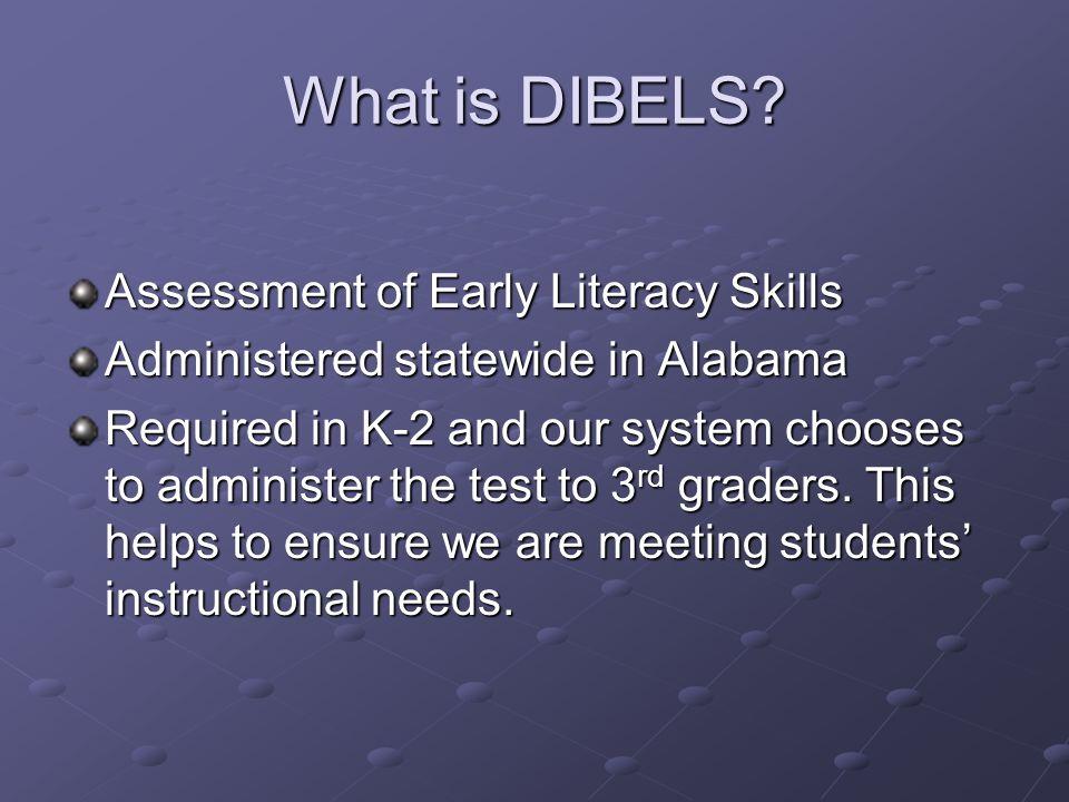 What is DIBELS.