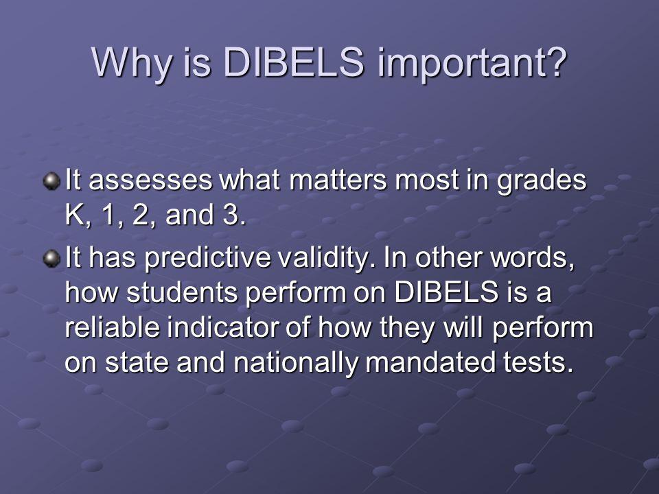 DIBELS bring focus to… Initial sound fluency Phoneme segmentation fluency Nonsense word fluency Oral reading fluency