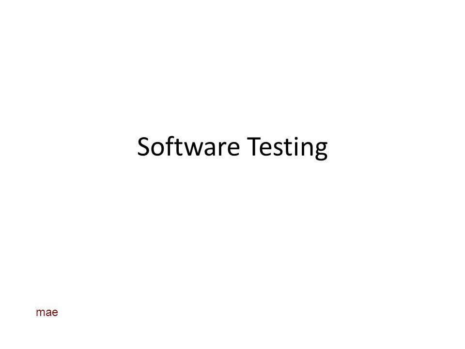 Software Testing mae