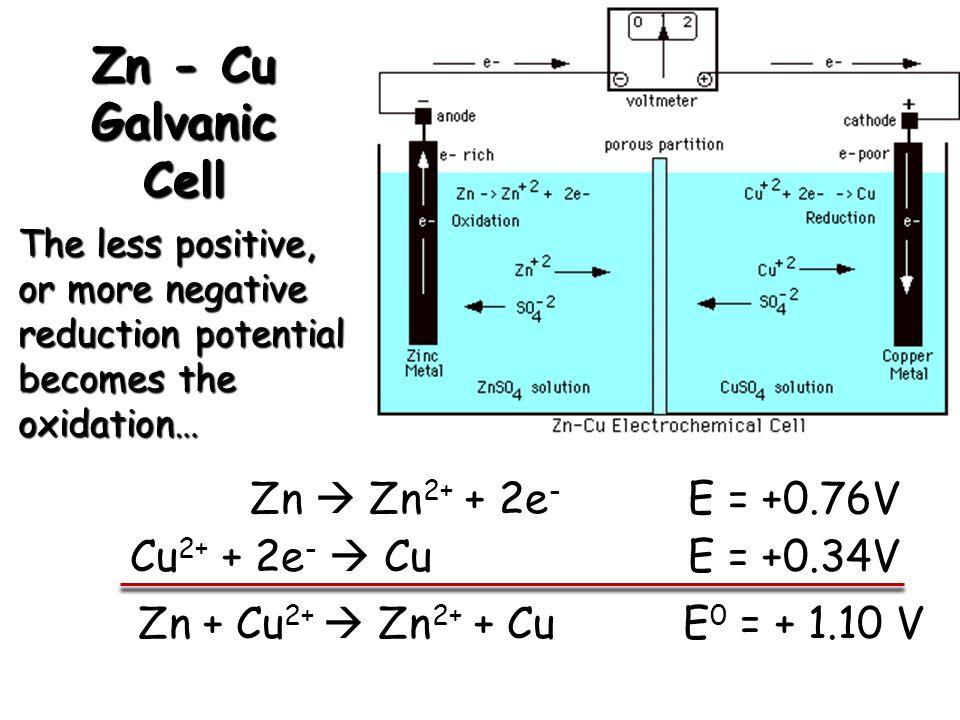 Zn - Cu Galvanic Cell Cu 2+ + 2e - Cu E = +0.34V The less positive, or more negative reduction potential becomes the oxidation… Zn Zn 2+ + 2e - E = +0