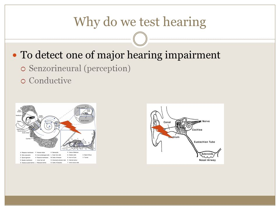 Why do we test hearing To detect one of major hearing impairment Senzorineural (perception) Conductive