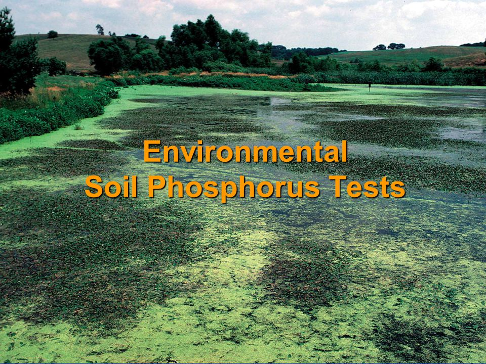 Environmental Soil Phosphorus Tests