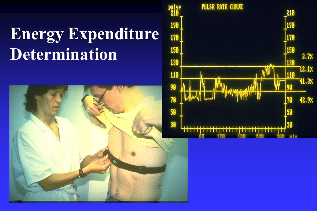 Energy Expenditure Determination