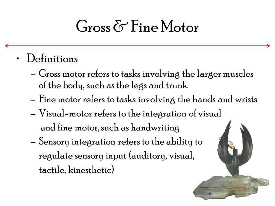 Gross & Fine Motor Definitions –Gross motor refers to tasks involving the larger muscles of the body, such as the legs and trunk –Fine motor refers to