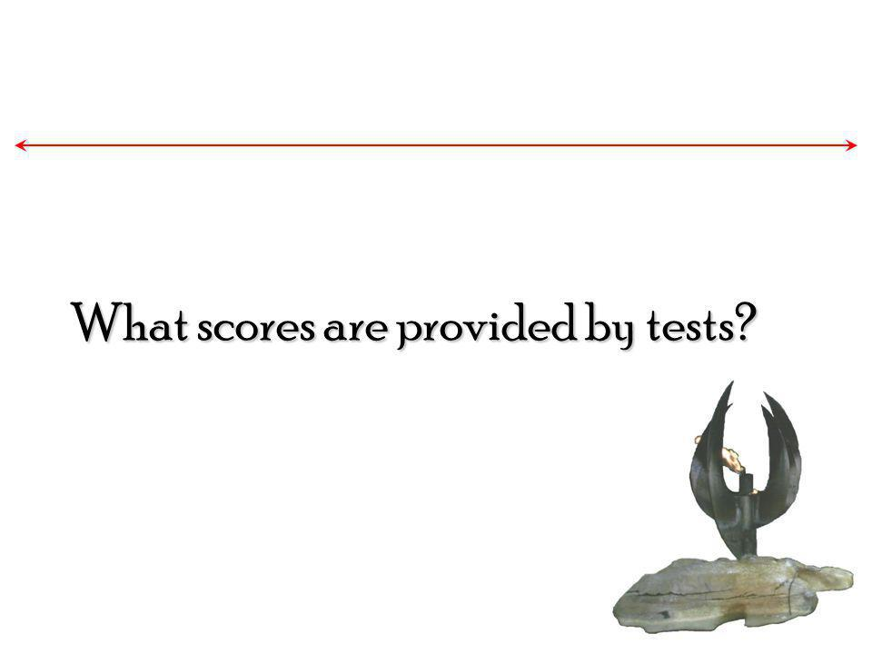 What scores are provided by tests?