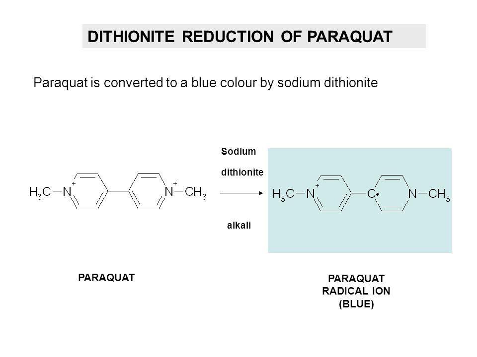 DITHIONITE REDUCTION OF PARAQUAT Sodium dithionite alkali PARAQUAT PARAQUAT RADICAL ION (BLUE) Paraquat is converted to a blue colour by sodium dithio