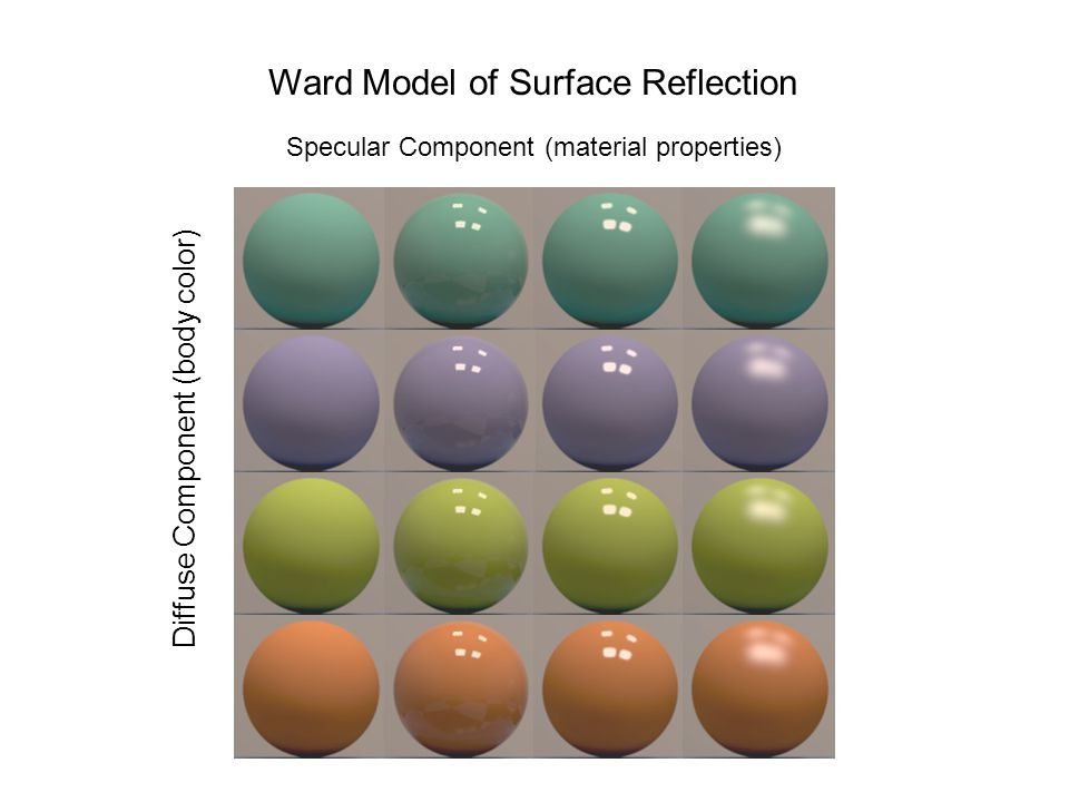 Ward Model of Surface Reflection Specular Component (material properties) Diffuse Component (body color)