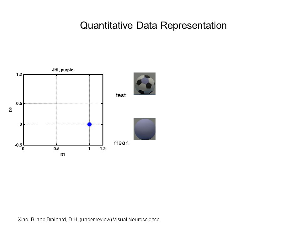 Quantitative Data Representation test mean Xiao, B.