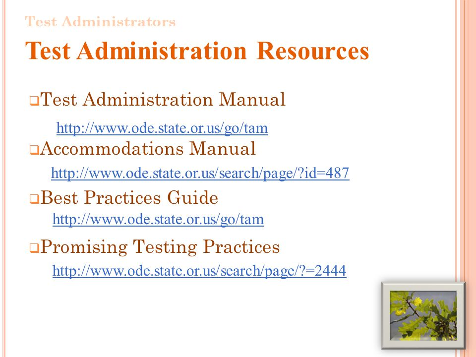Test Administration Manual Accommodations Manual   id=487 Best Practices Guide Promising Testing Practices = Test Administrators Test Administration Resources