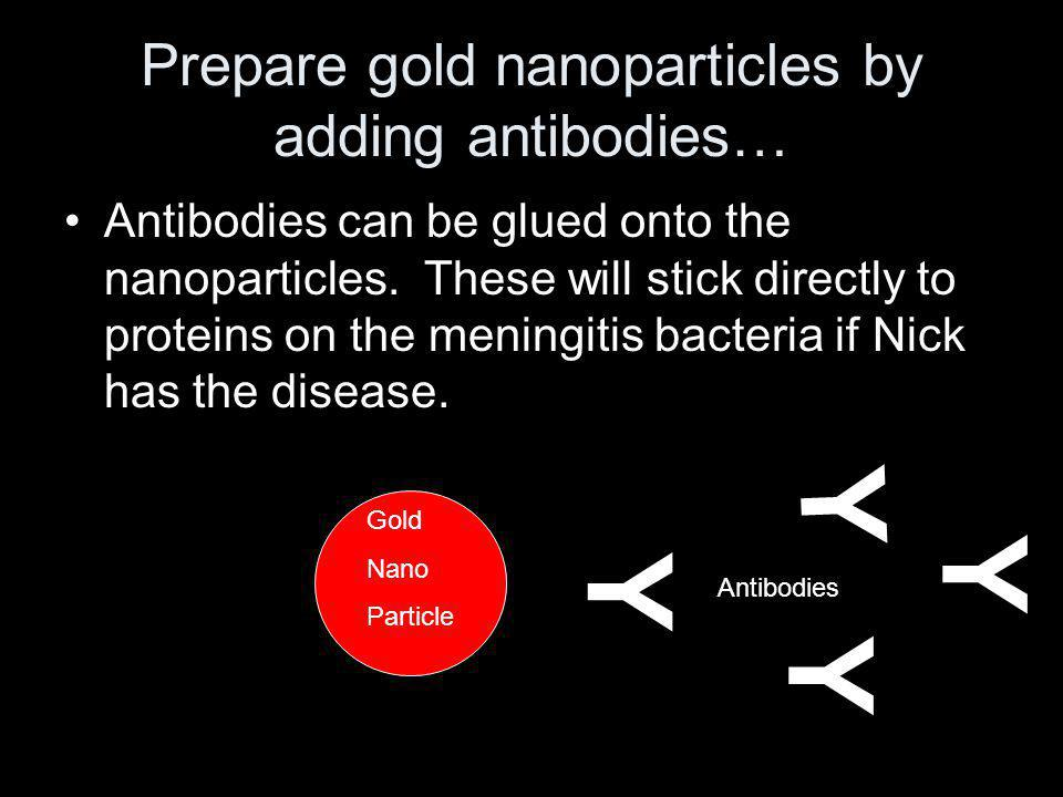 Prepare gold nanoparticles by adding antibodies… Antibodies can be glued onto the nanoparticles. These will stick directly to proteins on the meningit