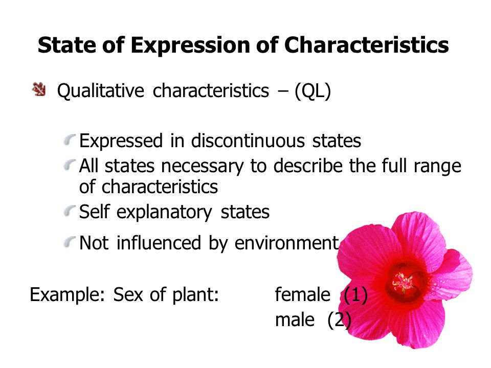 State of Expression of Characteristics Qualitative characteristics – (QL) Expressed in discontinuous states All states necessary to describe the full range of characteristics Self explanatory states Not influenced by environment Example: Sex of plant: female (1) male (2)