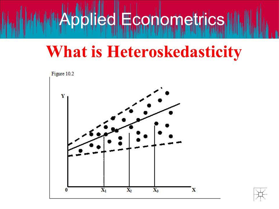 Applied Econometrics What is Heteroskedasticity