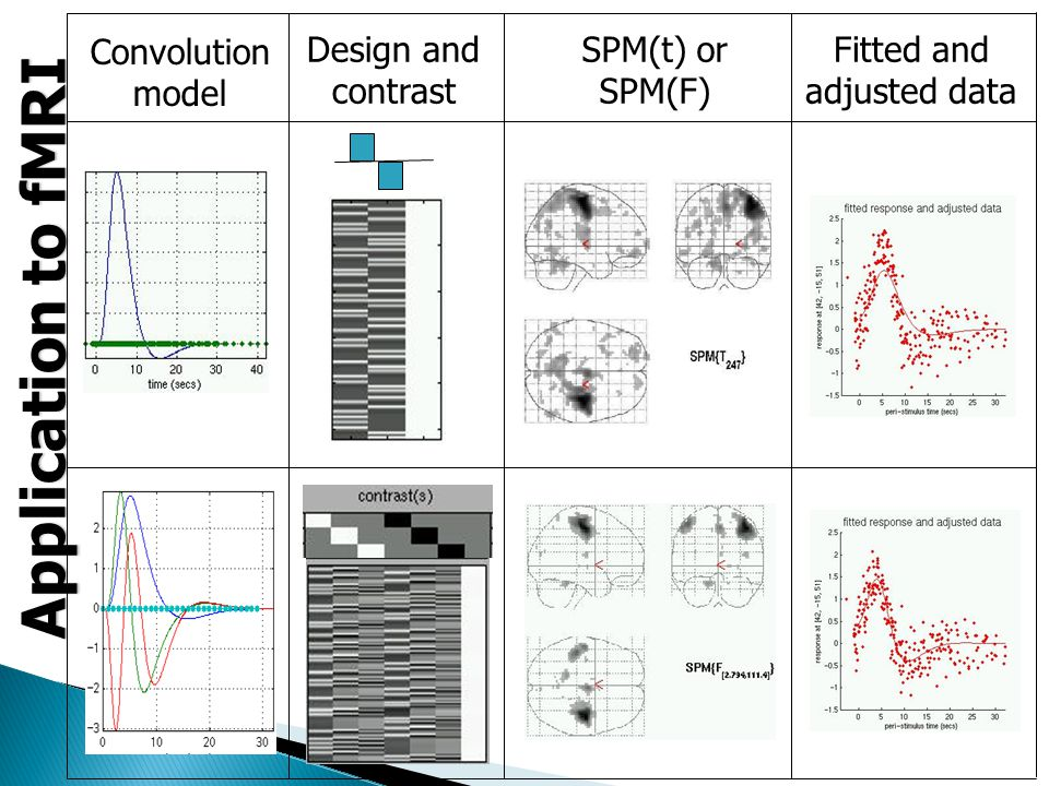 Convolution model Design and contrast SPM(t) or SPM(F) Fitted and adjusted data Application to fMRI