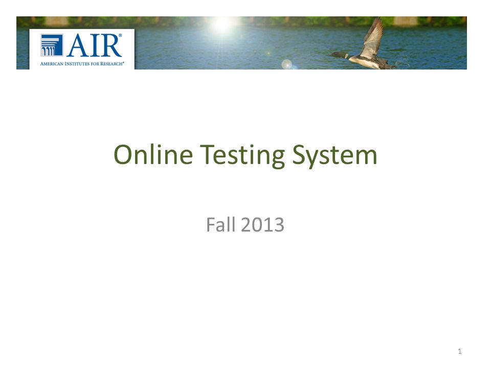 Online Testing System Fall