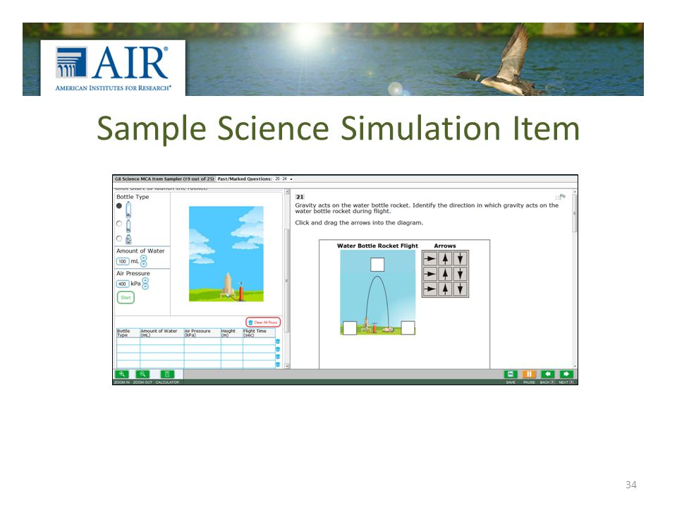 Sample Science Simulation Item 34