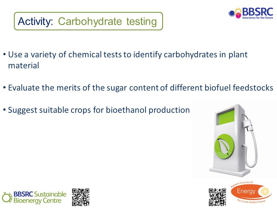 Activity: Carbohydrate testing Use a variety of chemical tests to identify carbohydrates in plant material Evaluate the merits of the sugar content of different biofuel feedstocks Suggest suitable crops for bioethanol production