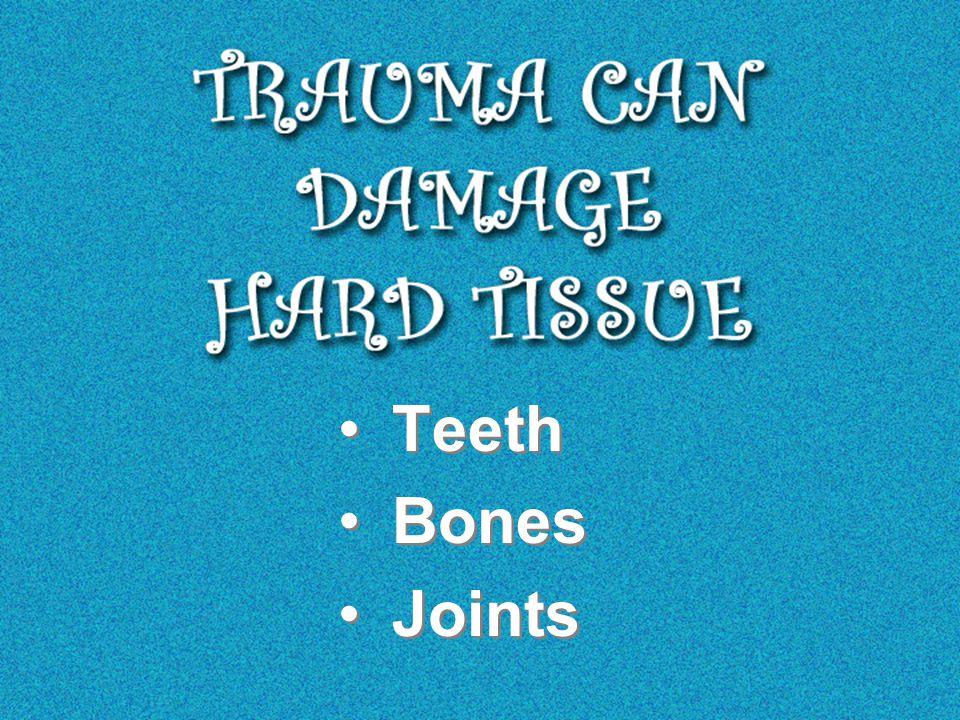 Teeth Bones Joints Teeth Bones Joints