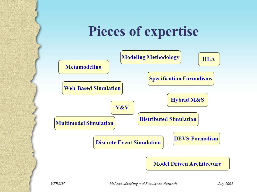VERSIM McLeod Modeling and Simulation NetworkJuly 2005 Competencies Application to sea ecology Copepod behavior modeling