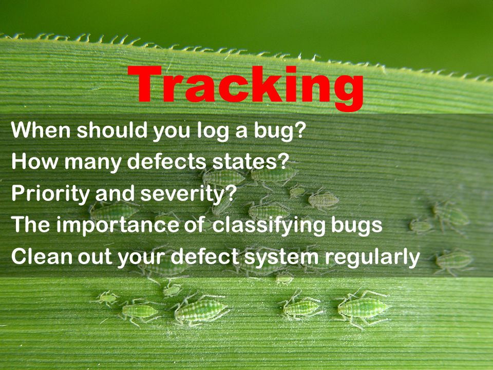 Tracking When should you log a bug. How many defects states.