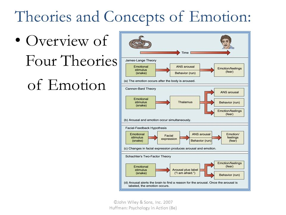 ©John Wiley & Sons, Inc. 2007 Huffman: Psychology in Action (8e) Theories and Concepts of Emotion: Overview of Four Theories of Emotion