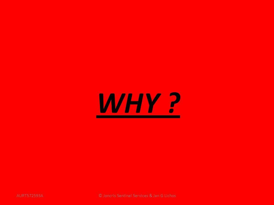 WHY ? AURT572593A© Joncris Sentinel Services & Jan G Lichos