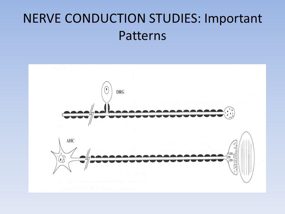 NERVE CONDUCTION STUDIES: Important Patterns