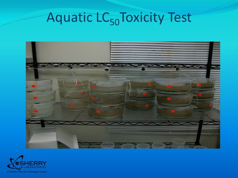 16 Produced Water Toxicity Test Randomly loaded organisms Randomly placed on test shelves This is a renewal test.