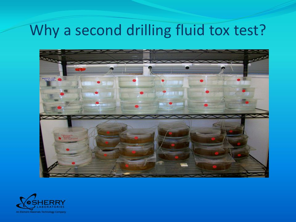 Sediment Toxicity Test Measure the effect of the SBM coated cuttings on the sea floor Uses Leptocheirus plumulosus as the test organism Exposes the Leptos to a mixture of SBM and a formulated (man-made) sediment