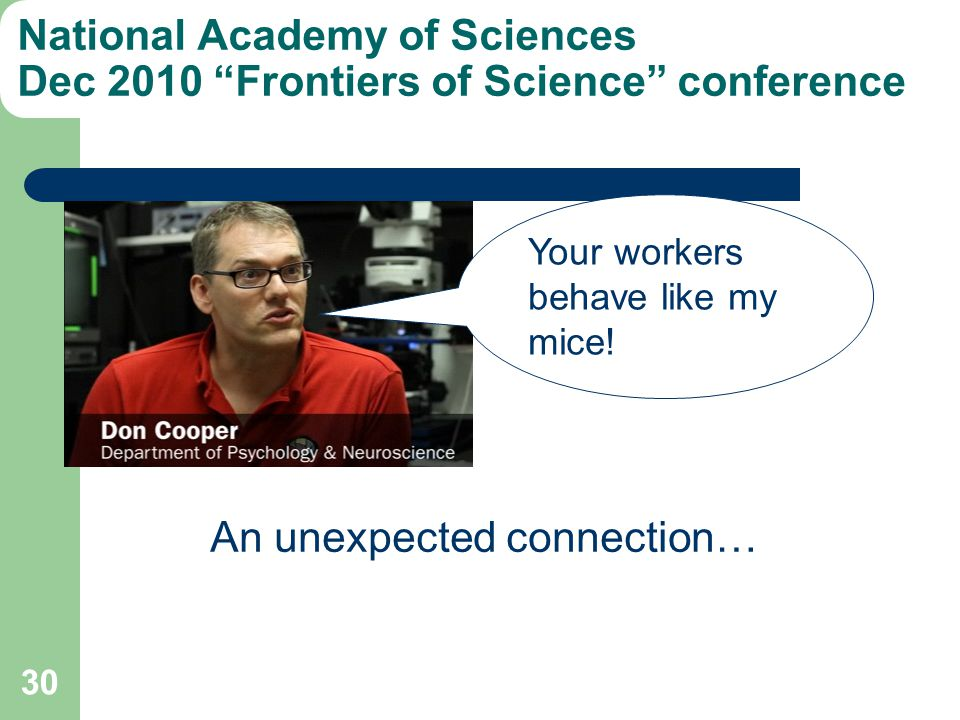 National Academy of Sciences Dec 2010 Frontiers of Science conference 30 Your workers behave like my mice! An unexpected connection…
