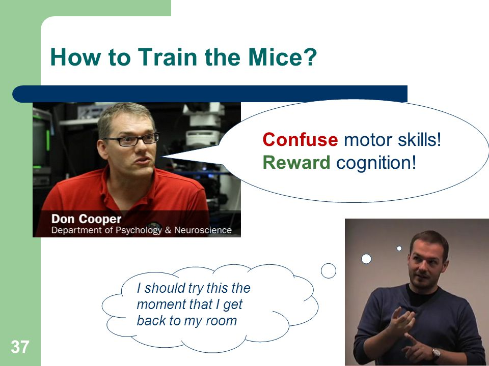 How to Train the Mice. 37 Confuse motor skills. Reward cognition.