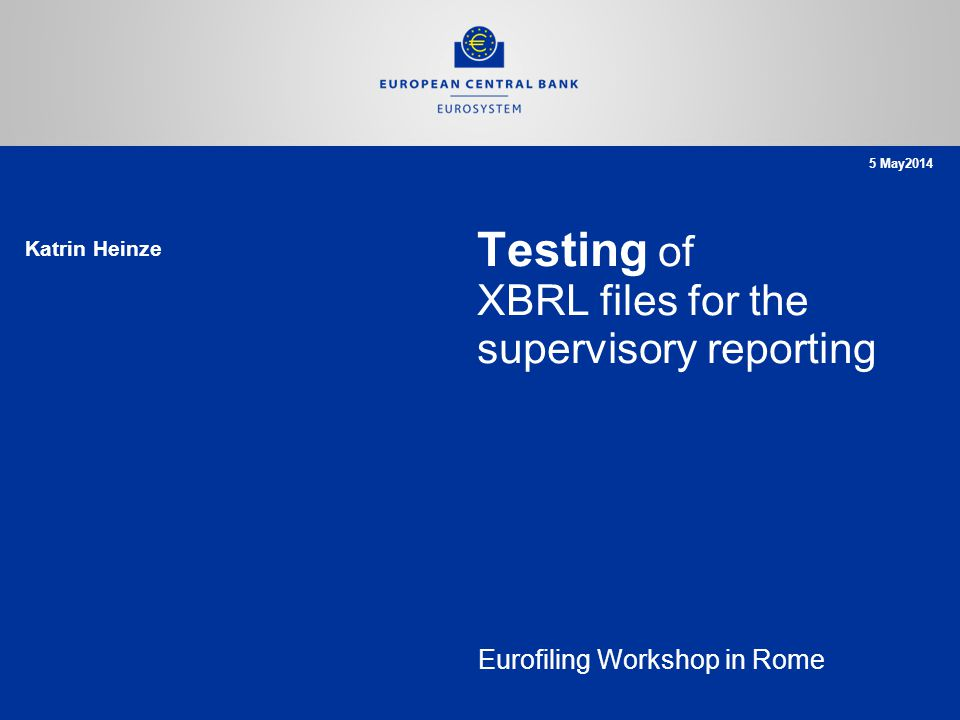 Rubric www.ecb.europa.eu © 1 2 3 Sample XBRL test cases Next steps SUBA Test Strategy Overview Page 12 Agenda Eurofiling Workshop in Rome, 5th of May 2014