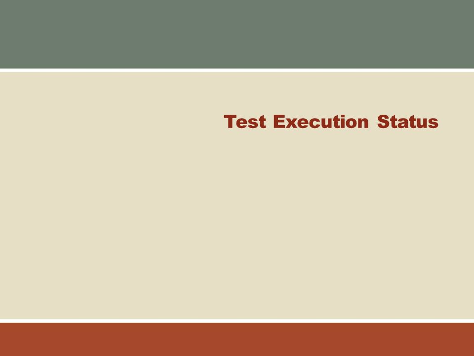 Test Execution Status