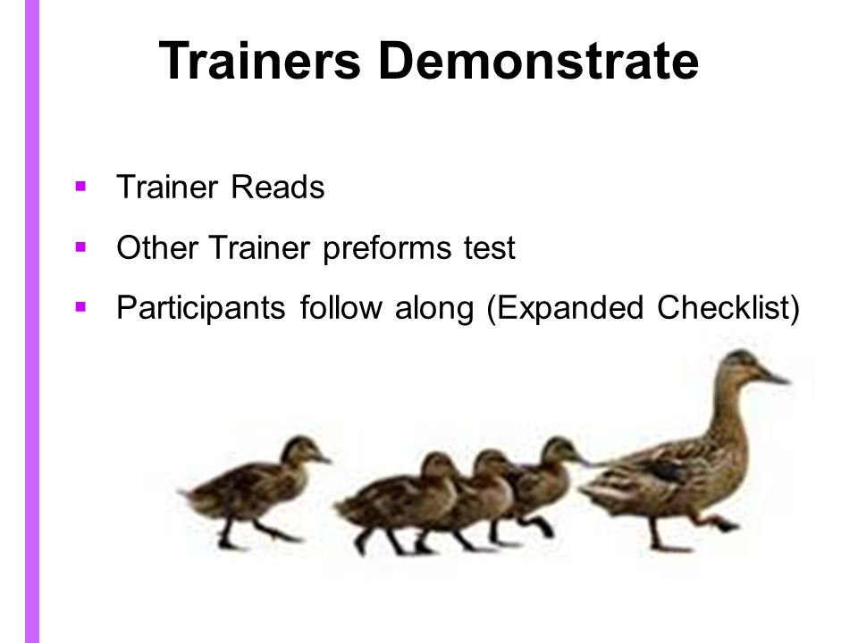 Trainers Demonstrate Trainer Reads Other Trainer preforms test Participants follow along (Expanded Checklist)