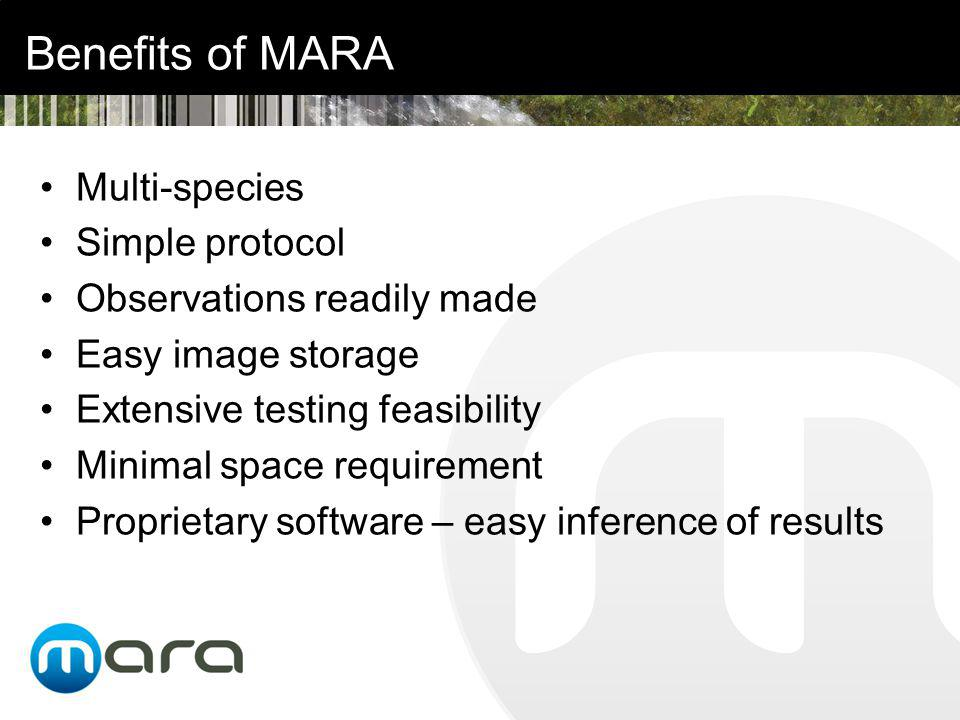 Benefits of MARA Multi-species Simple protocol Observations readily made Easy image storage Extensive testing feasibility Minimal space requirement Proprietary software – easy inference of results