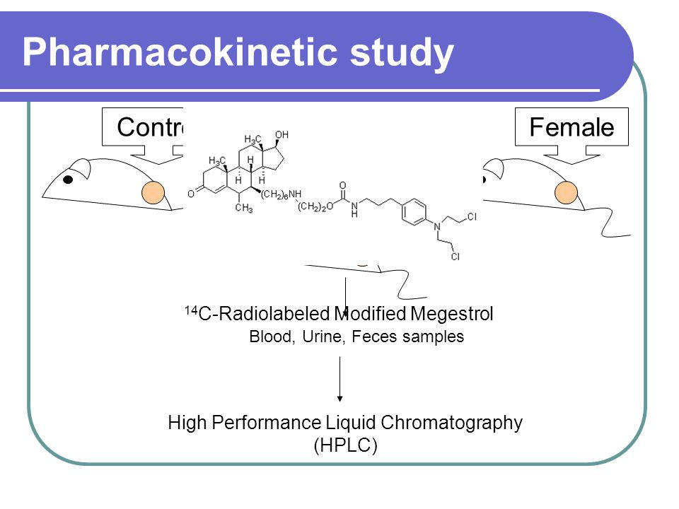 Pharmacokinetic study Control Male Female Blood, Urine, Feces samples High Performance Liquid Chromatography (HPLC) 14 C-Radiolabeled Modified Megestrol