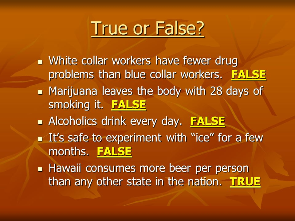 True or False. White collar workers have fewer drug problems than blue collar workers.