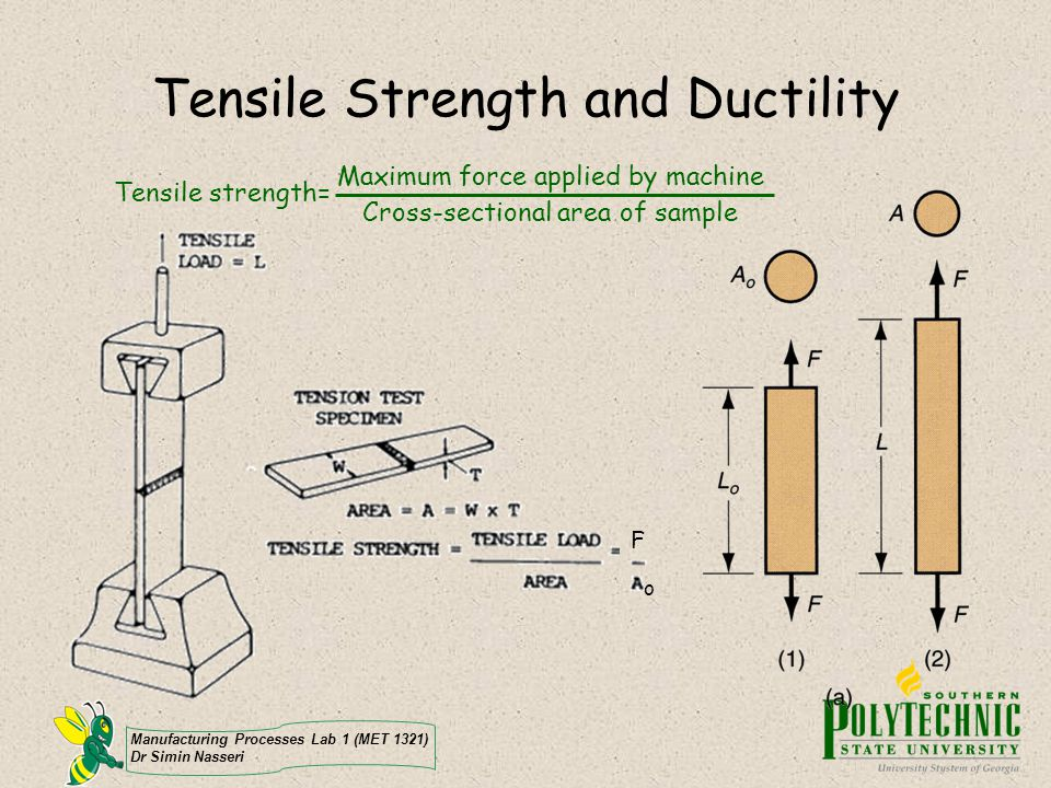 Manufacturing Processes Lab 1 (MET 1321) Dr Simin Nasseri Tensile Strength and Ductility Tensile strength= Maximum force applied by machine Cross-sect