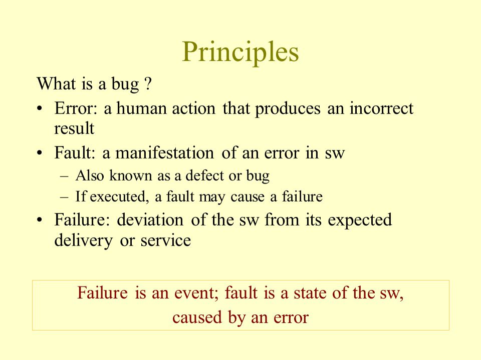 Principles What is a bug .