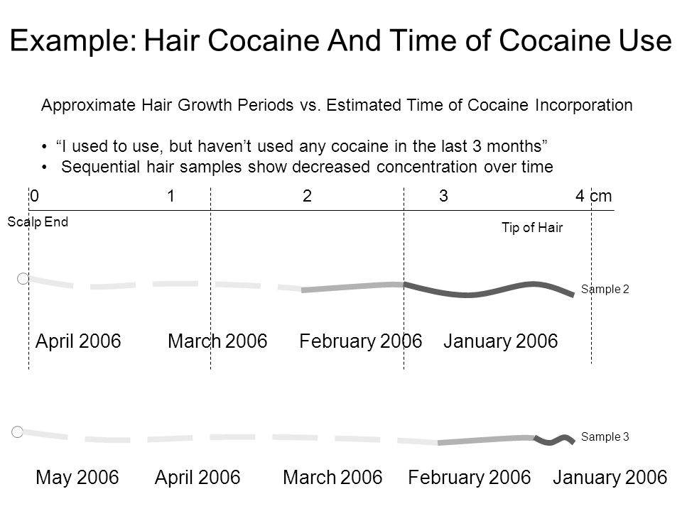 Example: Hair Cocaine And Time of Cocaine Use April 2006 March 2006 February 2006 January 2006 May 2006 April 2006 March 2006 February 2006 January 2006 Tip of Hair Scalp End 01234 cm Sample 2 Sample 3 Approximate Hair Growth Periods vs.