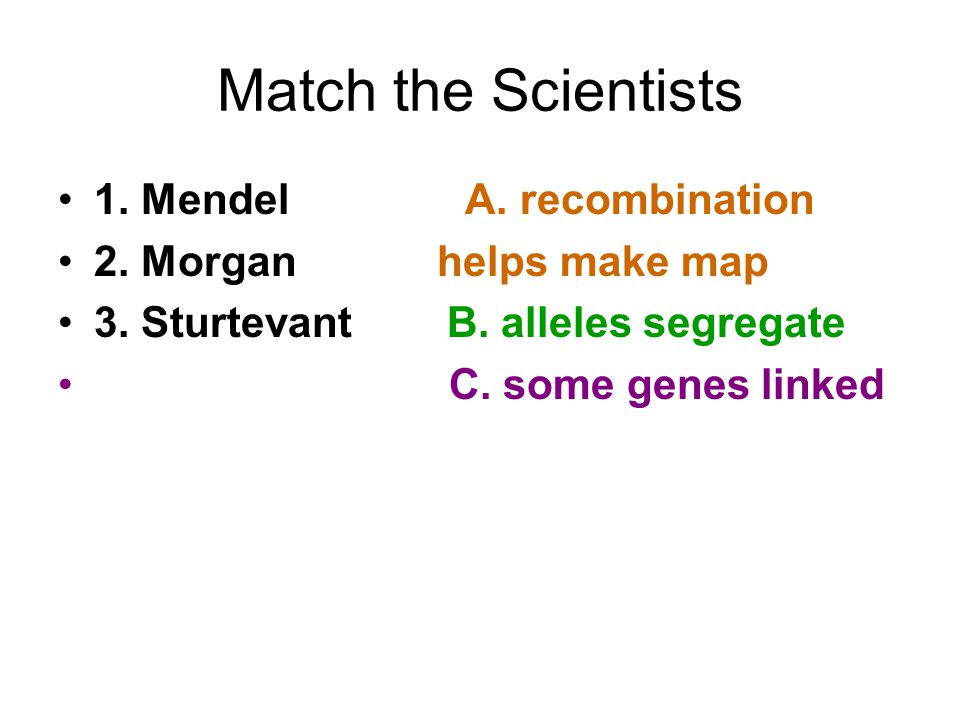 Match the Scientists 1.Mendel A. recombination 2.