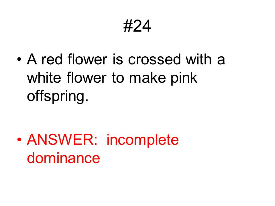 #24 A red flower is crossed with a white flower to make pink offspring. ANSWER: incomplete dominance