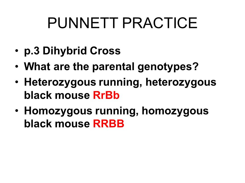 PUNNETT PRACTICE p.3 Dihybrid Cross What are the parental genotypes.